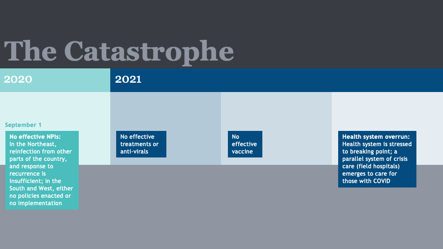 COVID Timeline: The Catastrophe