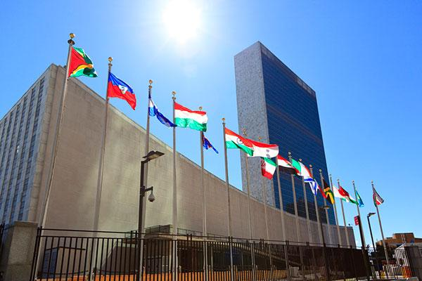 United Nations flags in NY